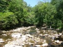 Photo by Zeb Weese. Lower Howards Creek in Clark Co.