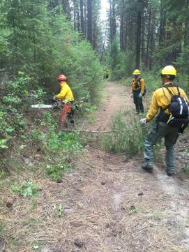 "Crews working by ""brushing out"" a forest road to allow access for incident vehicles. This particular road leads to multiple lookout locations on the fire, which is important for safety, operations and fire behavior personnel."