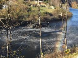 Rainbows and high hopes as water is picked up to help combat the fires.