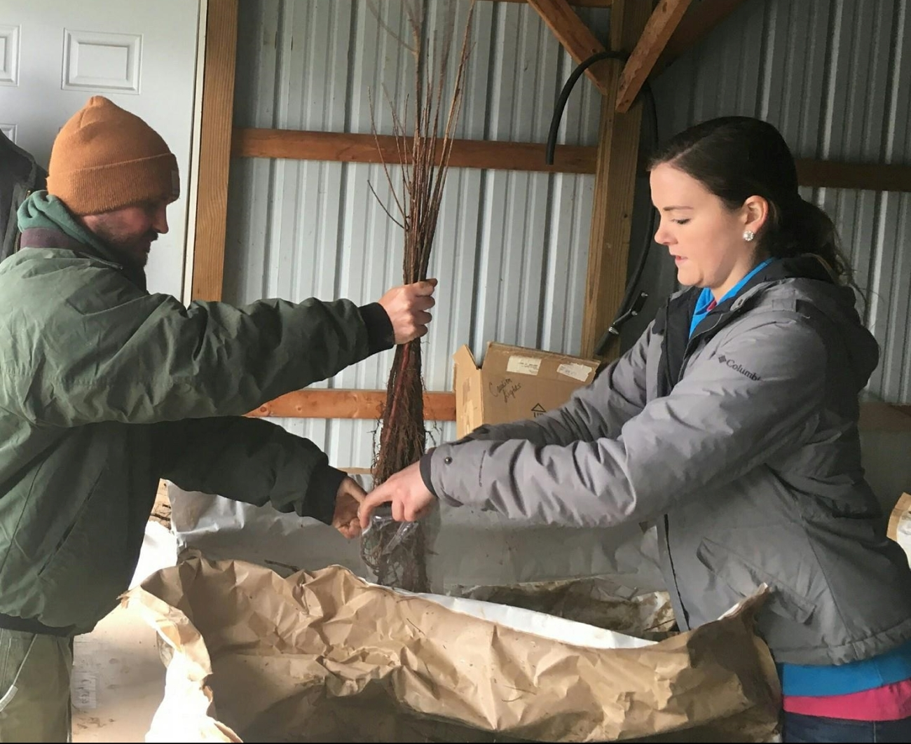 KDF has a long history of partnership with the Division of Conservation's annual seedling giveaways. Two such giveaways happened in the West Region's Butler and Ohio Counties.
