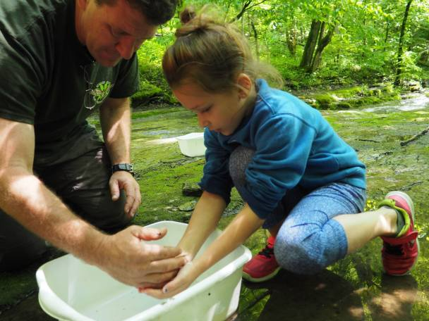Zeb Weese guides a tour a Floracliff in Lexington, KY and helps a young attendee identify a creek creature. Photo courtesy of Floracliff.