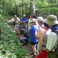 Hikers take a guided tour at Bad Branch.  Staff photo.