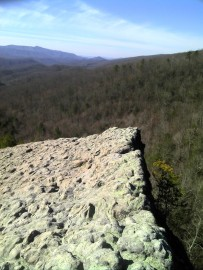 A bluff overlooks Blanton Forest. Photo by Zeb Weese.