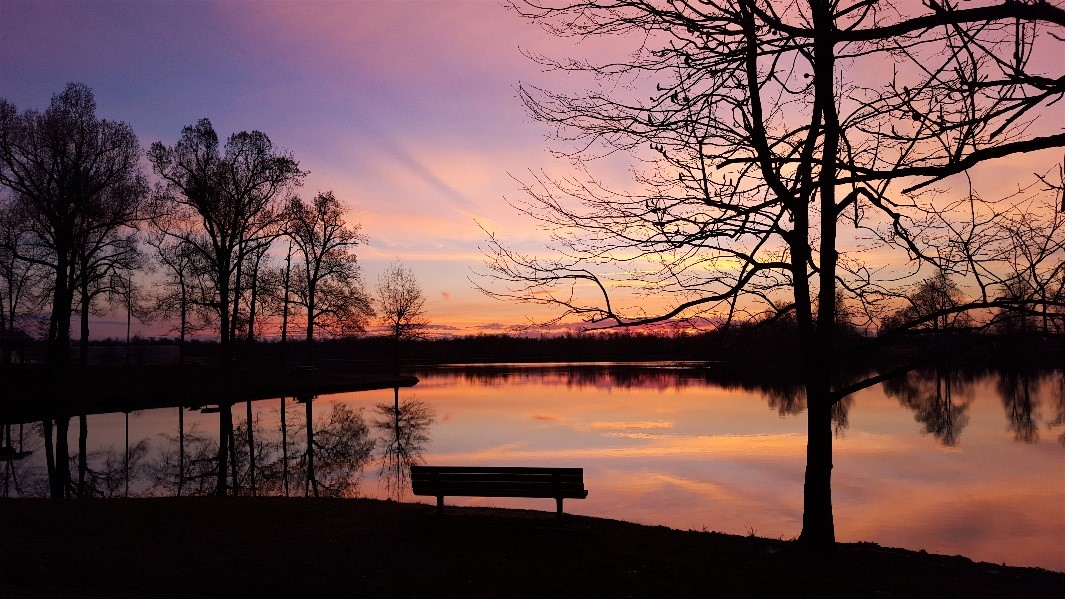 Chris Oelschlager's nature in the city with her photo 'Sunrise at Madisonville City Park.
