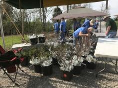Tree seedlings were one of the freebies volunteers received.