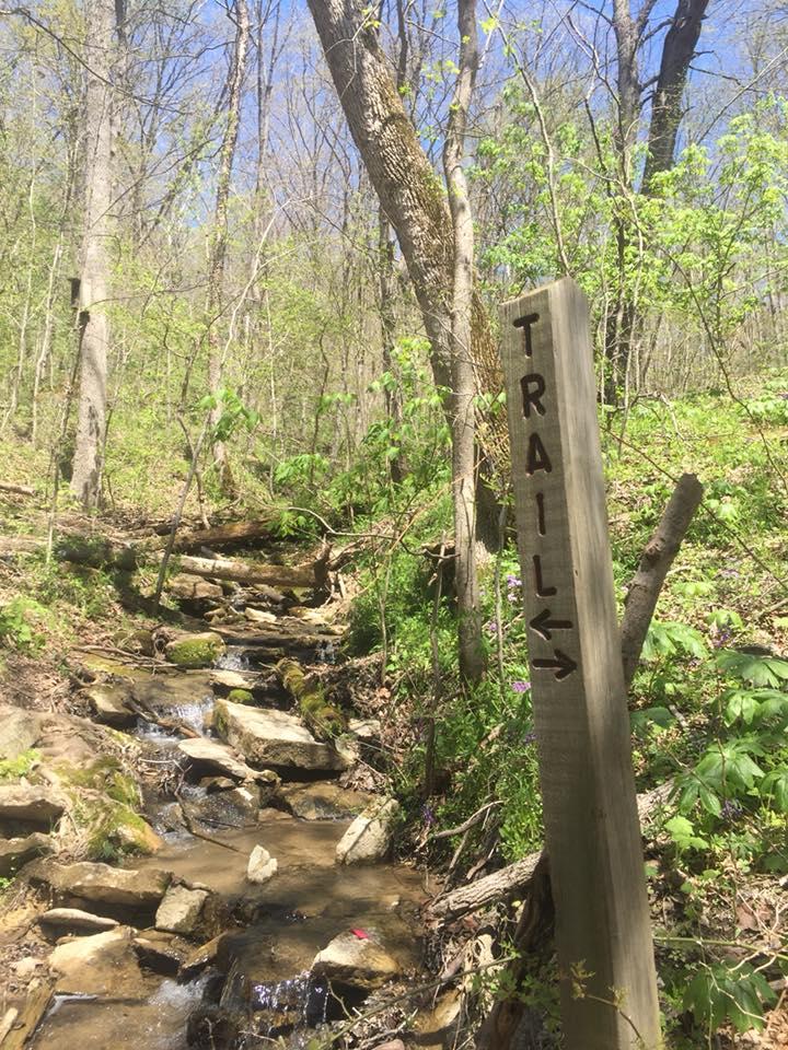 Boone Cliffs by ElaineWagel.