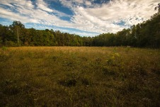 Hazeldell Meadow Preserve in Pulaski County.